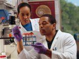 Chemome initiative:機械学習を使って有用なタンパク質を探る試み(1/2)